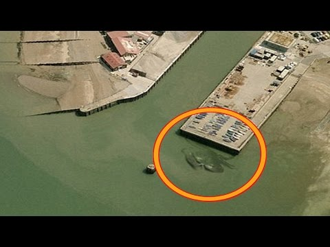 5 Most Mysterious Creatures Caught on Google Maps - YouTube