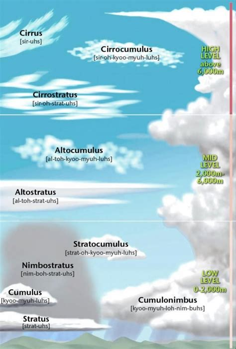 Types of Clouds | Weather science, Cloud type, Clouds